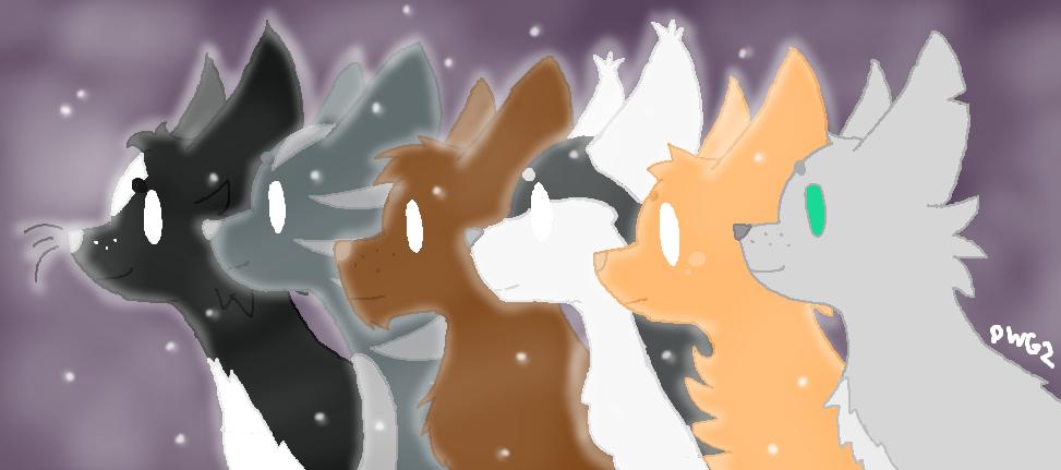 Mistclan Stars by DragonWolfGirl2
