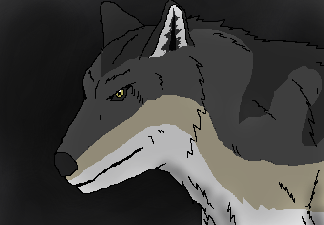 The Dire Wolf by TheSpiderAdventurer