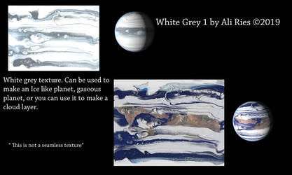 White Grey 1 by Ali Ries 2019
