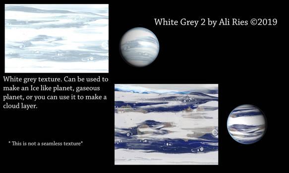 White Grey 2 by Ali Ries 2019