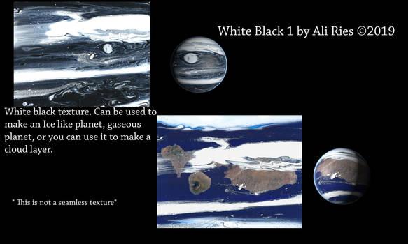 White Black 1 by Ali Ries 2019