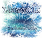Winterbrushes