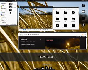 SNAS theme