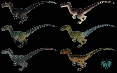 JWE - Velociraptor Skin Concepts + Download by LeviaDraconia