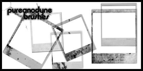 Polaroid Brush Set by anodyne-stock