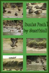 Boat Trip - Ducks Pack 1 by Gwathiell