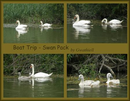 Swan Pack by Gwathiell