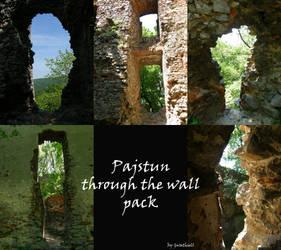 Pajstun Through the wall Pack by Gwathiell