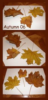 Autumn 06 by Gwathiell