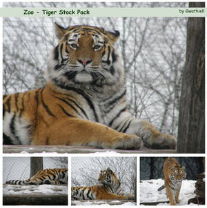 Zoo - Tiger Pack