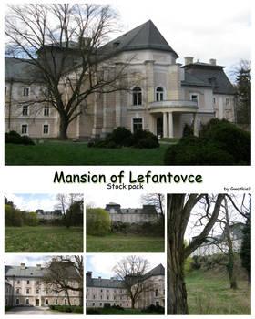 Lefantovce - Mansion StockPack