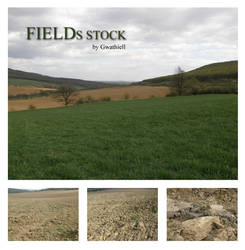 Field stock pack by Gwathiell