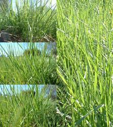 Grass Pack by Gwathiell