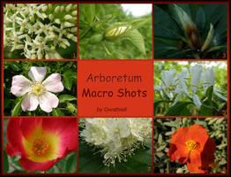 Arboretum - Macro Shots Pack