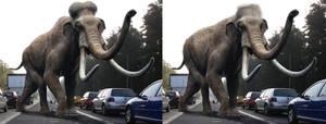 Mammoth Photomanip