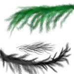 Pine-needle Brush