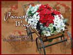 Poinsettia Wagon PACK