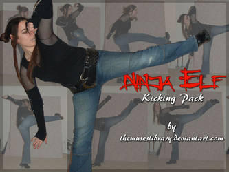 Ninja Elf Kick PACK by themuseslibrary