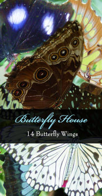 Butterfly House Pack