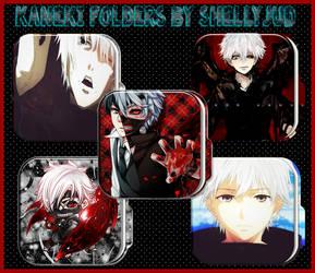 Kaneki Ken (Tokyo Ghoul) Droid Folders