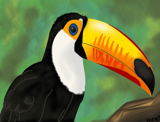 Toucan! by iwuvrubberduckies
