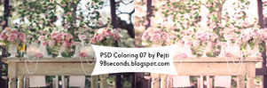 (4)  PSD Coloring