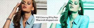 (6) PSD Coloring
