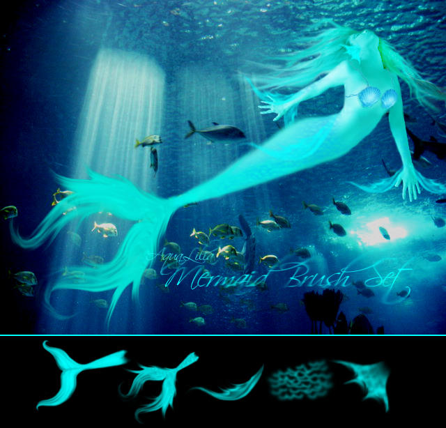 AquaLilia Mermaid Brushes by AquaLilia