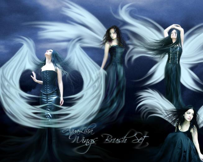 AquaLilia Wings Brushes by AquaLilia