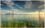 Lake View VI - Wallpaper by superjuju29