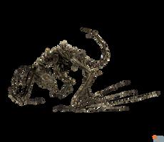XPS MMD TES V: Dragon skeleton by Tokami-Fuko