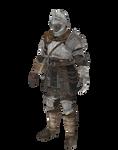XPS DS: Regular (royal) knight
