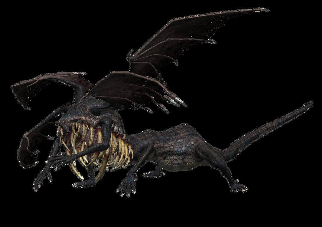 dark souls gaping dragon wwwimgkidcom the image kid