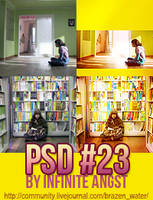 PSD 23 by infiniteangst