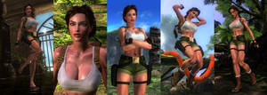 DOA5LR Mod: Lara Croft TRIII South Pacific