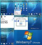 Windows 7 for Blackberry 8100