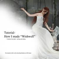 Tutorial: Wishwell by Iardacil