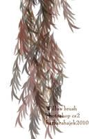 Willow Brush by hajek-barbara