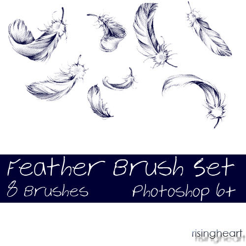 Feather Brush Set 1 by risingheart