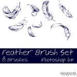 Feather Brush Set 1