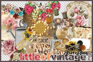 A little of vintage? by photosoma
