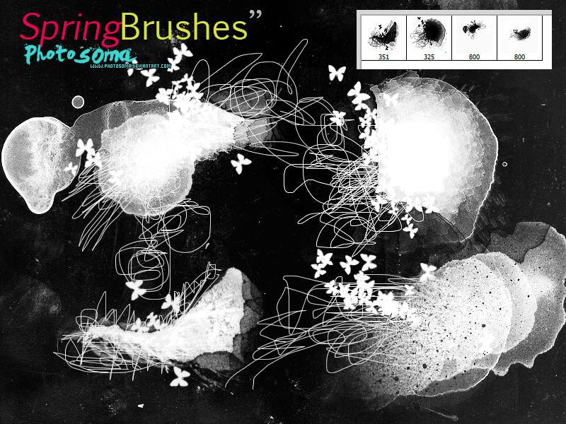 Spring Brushes by photosoma