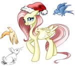 Holiday-Shy