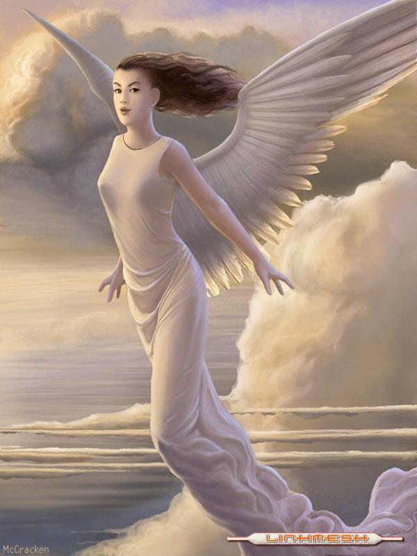 смотреть картинки ангелов с крыльями