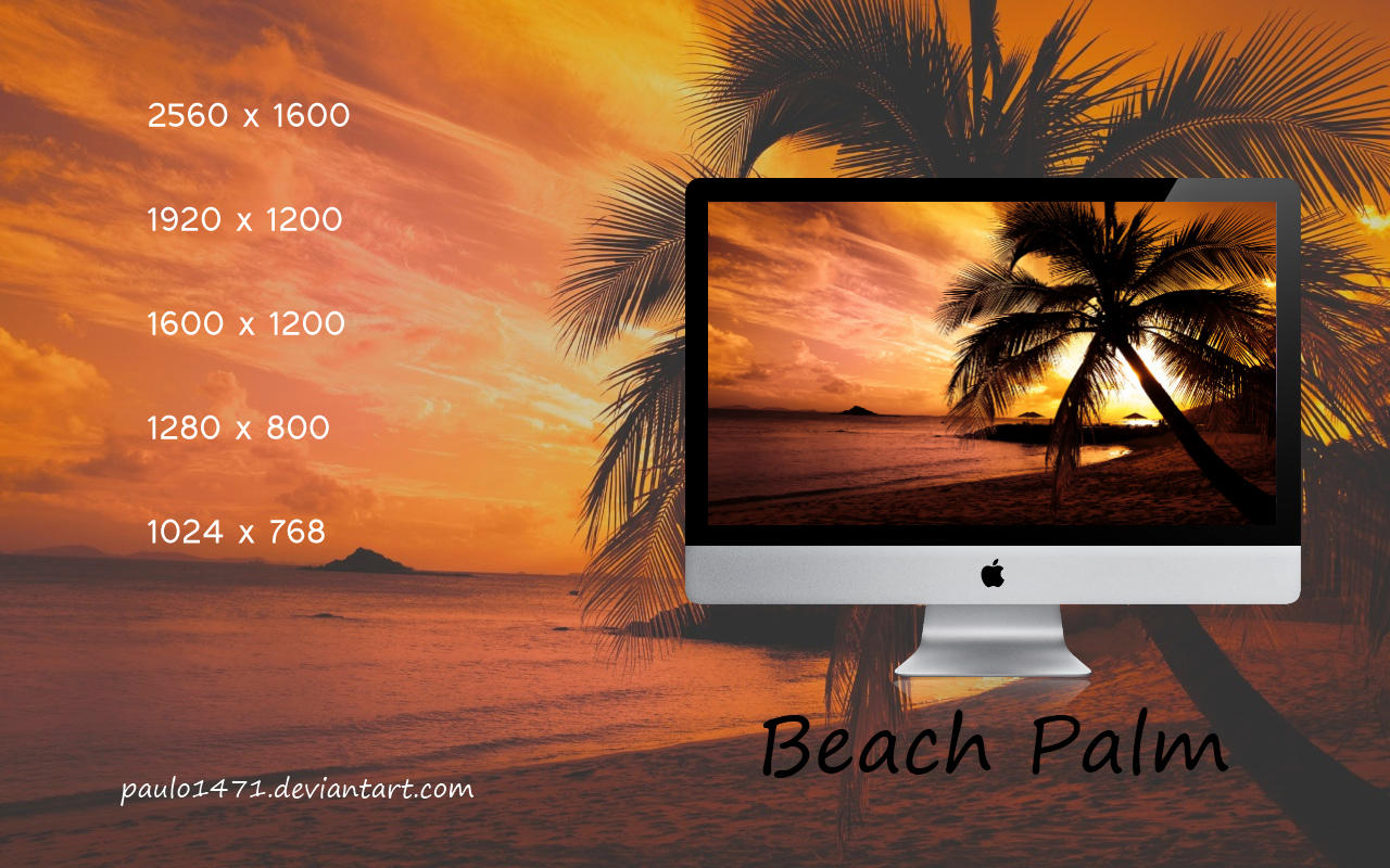 Beach Palm Wallpaper by Paulo1471