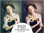 PSD Coloring 01