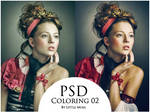 PSD Coloring 02
