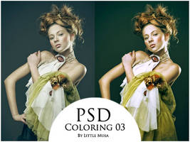 PSD Coloring 03 by LittleMusa