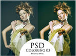 PSD Coloring 03