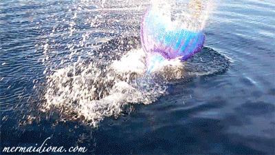 Fluke Splash (gif)